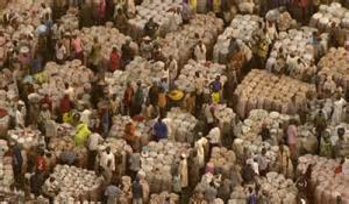 পাকিস্তানে স্থিতিশীল তুলার বাজার